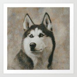 Siberian Husky portrait Art Print