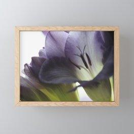 Freesia flowers Framed Mini Art Print