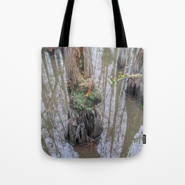 The  Swamp Fairy's Home Tote Bag