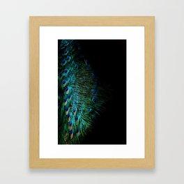 Peacock Details Framed Art Print