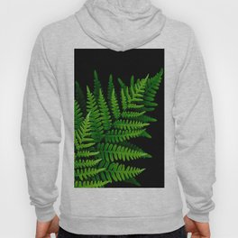 Fern Fronds on Black Hoody