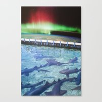 northern lights Canvas Prints featuring Northern Lights by John Turck