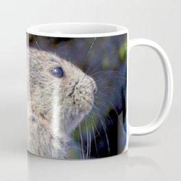 Watercolor Pika 08, Trail Ridge Road, RMNP, Colorado, Springtime Snow Melt Emergence Coffee Mug