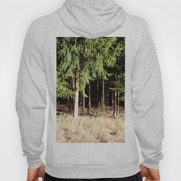 Germany Forest 1 Hoody