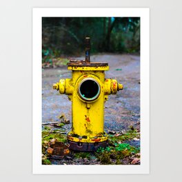 Abandoned Fire Hydrant Art Print