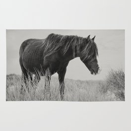 Sable Horse Rug
