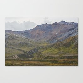 Natural Color Canvas Print