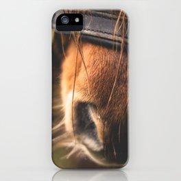Soft Horse Nose iPhone Case