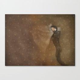 Sleeps With Stars 2 Canvas Print