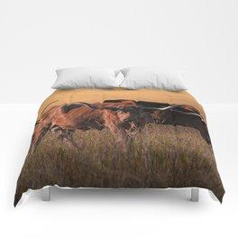 Texas Longhorn Steers on the Prairie at Sunset Comforters