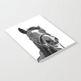 Horse Photo | Black and White Notebook