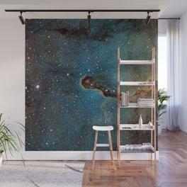 The Elephant Trunk Nebula Wall Mural