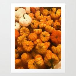 Pumpkins Tiny Gourds Pile Art Print