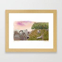Boiada Framed Art Print