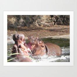 Hippo Fight Art Print