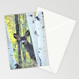 Hide and Seek - Young Mule Deer Among Aspen Trees in Western Colorado Stationery Cards