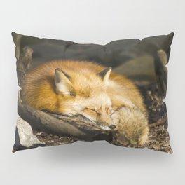 Vulpes Vulpes Pillow Sham