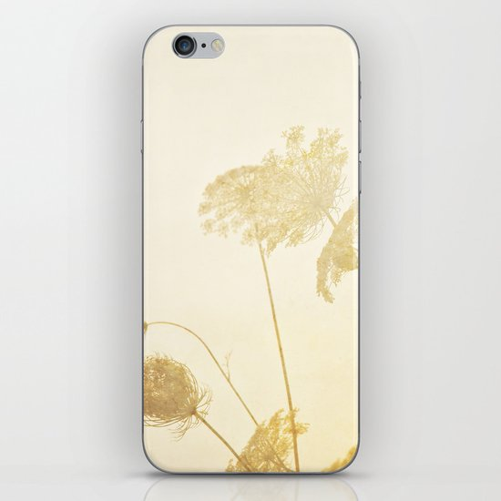 Queen Anne's Lace iPhone & iPod Skin
