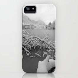 Wintry Lake Bohinj iPhone Case