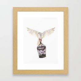 Even doves have pride Framed Art Print