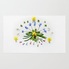 Spring flowers and branches II Rug