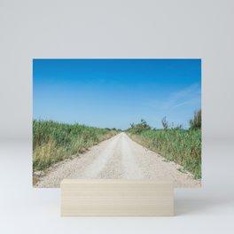 Dirt road in the Regional Natural Park of Camargue Mini Art Print
