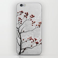 Abstract Flowers 6 iPhone & iPod Skin