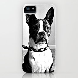 Bobo iPhone Case