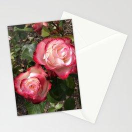 2 Red roses - Golden Gate Park Rose Garden Stationery Cards