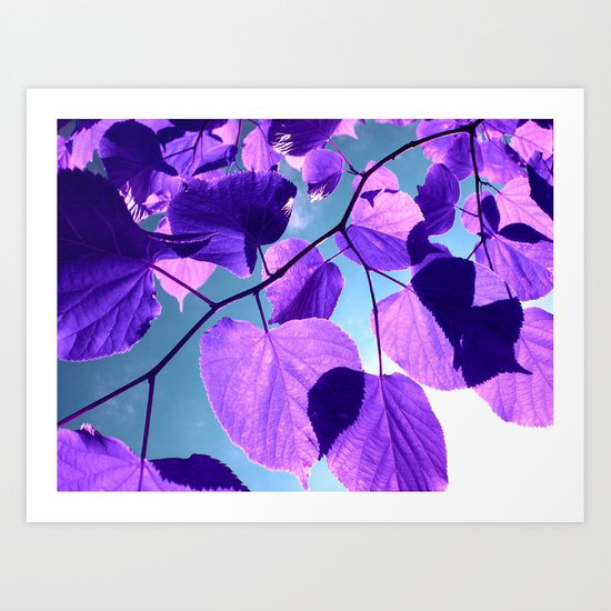 purple lime leaves I Art Print
