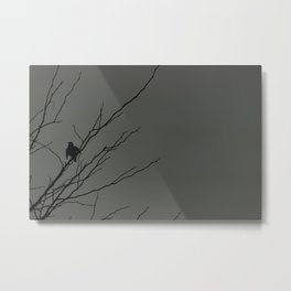 Little Black Bird: Grey Metal Print