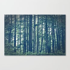 See the Forest for the Trees Canvas Print