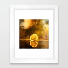 Beautiful Flower Reflection Framed Art Print
