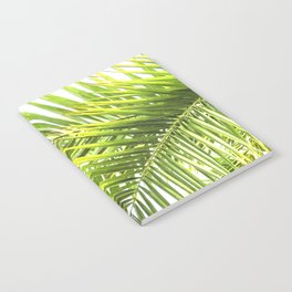 Palm leaves tropical illustration Notebook