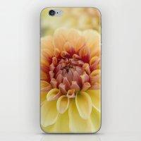 fifth harmony iPhone & iPod Skins featuring Harmony by Kim Hojnacki Photography