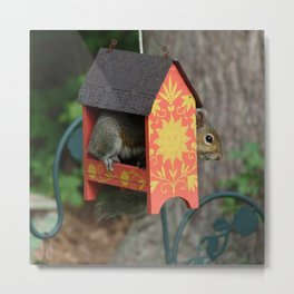 Sunshine Squirrel House Metal Print