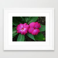 hot pink Framed Art Prints featuring Hot Hot Pink by Nevermind the Camera