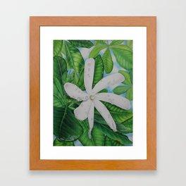 Tiare Tahiti Framed Art Print