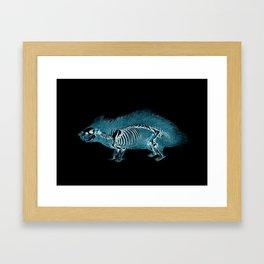 X-ray Hedgehog - Woodland Animals - Hedgehog Art - Porcupine Art Framed Art Print
