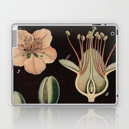 Botanical Almond Laptop & iPad Skin