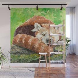 Red panda Wall Mural
