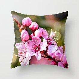 A sign of Spring. Throw Pillow