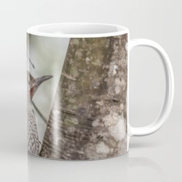 Northern Flicker, Male Red Shafted, No. 1 Coffee Mug