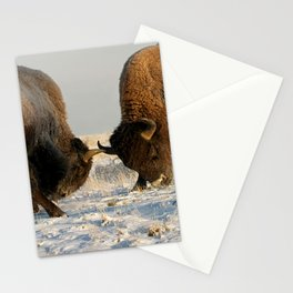 BISON FIGHTING Stationery Cards
