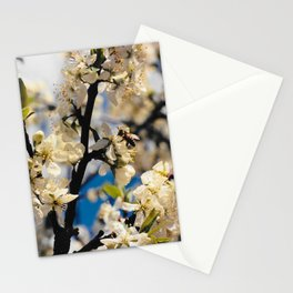 ABEILLE,bee Stationery Cards