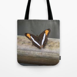 black, white and orange butterfly Tote Bag