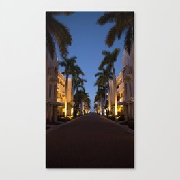 Palm Tree Drive Canvas Print