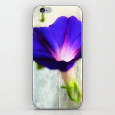 Morning Queen iPhone & iPod Skin