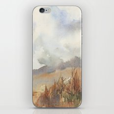 Foothill Wash iPhone & iPod Skin