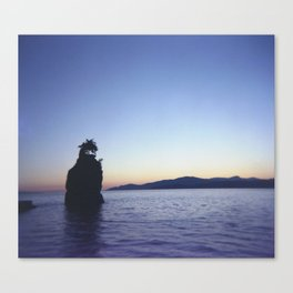 Shroomy Sunset Canvas Print